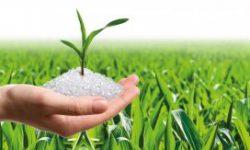 Mỹ phát triển vật liệu sinh học mới từ chất xơ thực phẩm