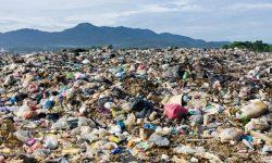 Vương quốc Anh ra mắt bộ tiêu chuẩn mới dành cho vật liệu phân hủy sinh học
